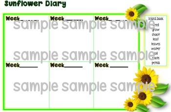Sunflower Diary