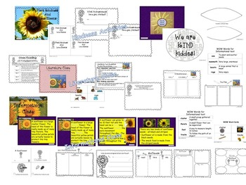 Kindness--Sunflower Garden of Activities - Kiddos Connect to Kindness All -Year
