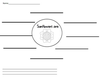 Sunflower Graphic Organizer
