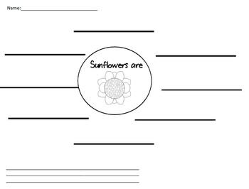 Sunflower Graphic Organizer