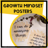 Sunflower Growth Mindset Posters - 20 posters, 2 different