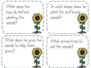 Sunflower House Activities