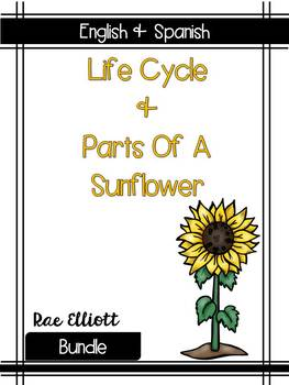 Sunflower Label & Life Cycle- Bilingual