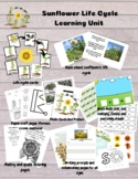 Sunflower Learning Unit For Science, Writing, Crafts, Math