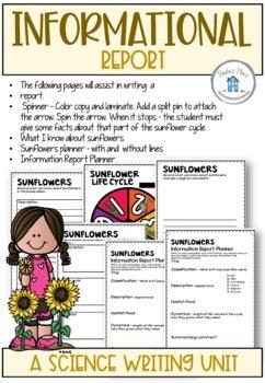 Sunflower Life Cycle