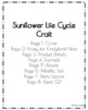 Spring, Summer Weather Craft: Sunflower Life Cycle