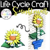 Sunflower Life Cycle Craftivity