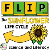 Sunflower Life Cycle FLIP Book