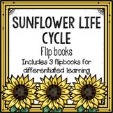 Sunflower Life Cycle Flipbook