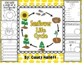 Sunflower Life Cycle {Informational Writing Packet}