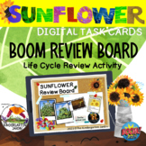 Sunflower Life Cycle Review Board | BOOM Deck