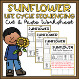 Sunflower Life Cycle Sequencing & Writing Worksheets Differentiated