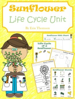 Sunflower Life Cycle Unit  ~ Literacy and Science Activities
