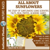Life Cycle of a Sunflower -Math, Literacy, Science
