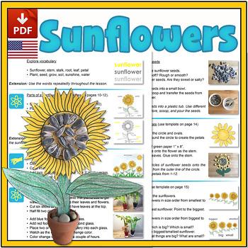Sunflower Mini-lesson - US Version (Letter)