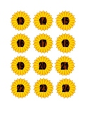 Sunflower Numbers for Calendar or Counting Activity