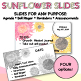 Sunflower PPT Template