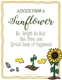 Sunflower Packet {Life Cycle and Acrostic Poem}