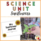 Sunflower Planting and Growth Unit - Half off! - Distance Learning
