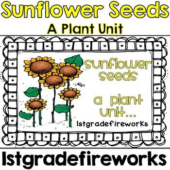 Sunflower Seeds..a Plant Unit