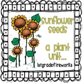 Sunflower Seeds..a Plant Unit