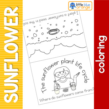 Sunflower life cycle coloring booklet