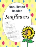 Sunflowers-Nonfiction Close Reading