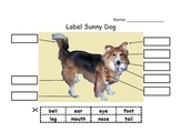Sunny Labeling and Writing Pack