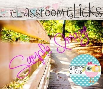 Sunny Walking Path Image_262:Hi Res Images for Bloggers & Teacherpreneurs