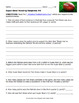 Football Reading Comprehension Passages and Questions