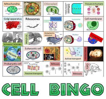 Bundle: Super Cell Mega pack