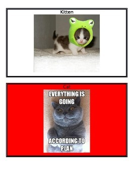 Super Improver Levels- Cat Theme