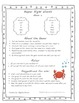Super Sight Words- Game 4