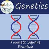 Genetics: Superhero Punnett Square Practice Problems