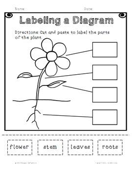 Superkids Writing and Center Materials:  First Grade, Level 4, Unit 6