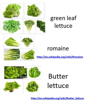 Supermarket Vegetables (Supermarket Series)