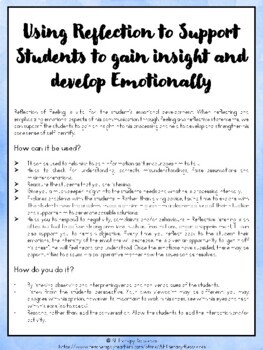 Supporting Students to Gain Insight (through reflection) - Autism, ABA