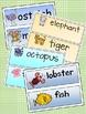 Kindergarten Animal and Ocean Bundle          *Great Value*
