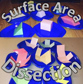 Surface Area Dissection Activity