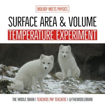 Temperature Change Lab