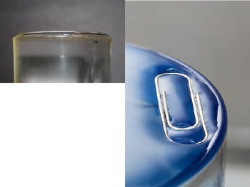 Surface Tension Examples