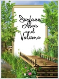 Math Posters: Surface area and Volume of a..
