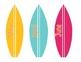 Surfboard Calendar Pack