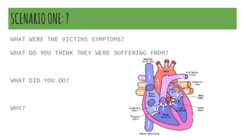 Survival Medicine Activity: Cardiovascular System
