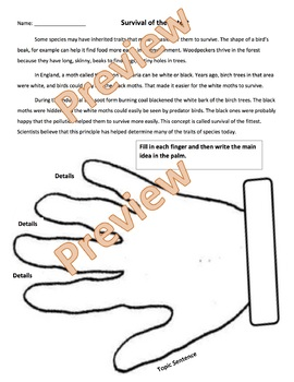 Survival of the Fittest article/ Find Main Idea Graphic Organizer