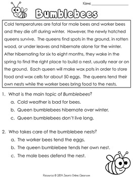 Winter Activities {Close Reading Passages, Questions & Answers}