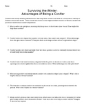 Survivng the Winter: Advantages of Being a Conifer