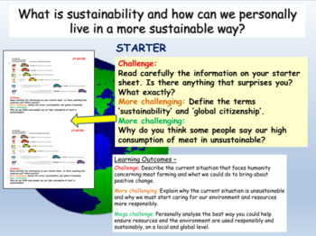 Sustainability: Global Citizenship