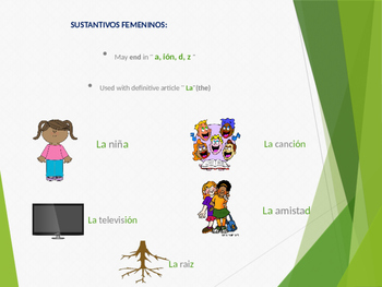 Sustantivos / Nouns in spanish