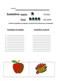 Sustantivos:  singular y plural